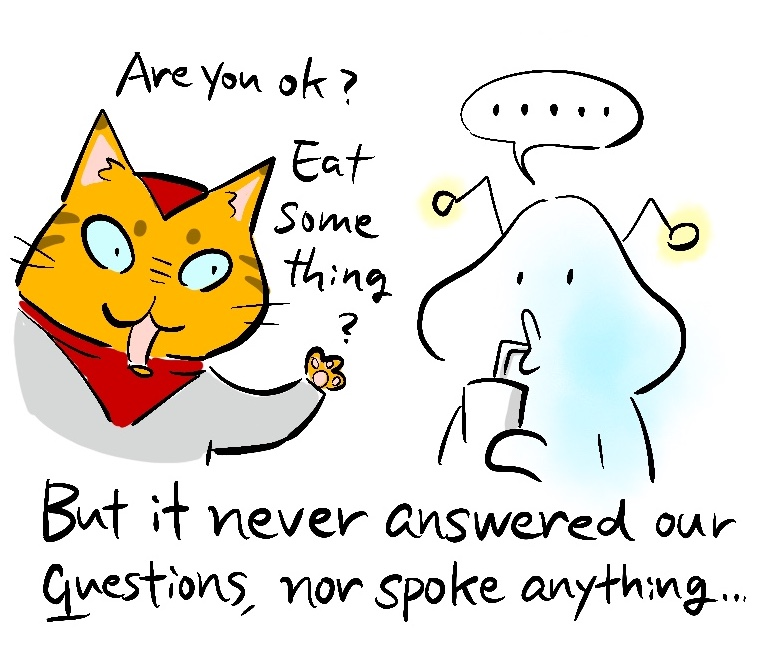 -Are you ok? Eat something? -But it never answered our questions, nor spoke anything...